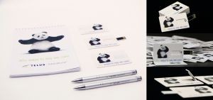 clean-branded-goodies-memory-stick-cards-3dartstudio