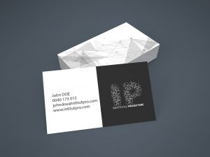 vector-logo-design-proposal-design-institute-business-cards-mockup-preview-01-3dartstudio