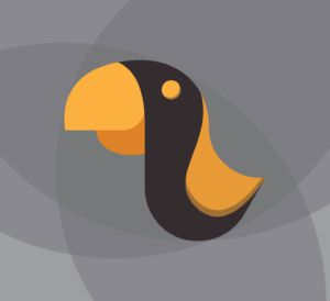 type-of-illustrations-bird-toucan-vectorial-sketch-design-logo-3DArtStudio-03