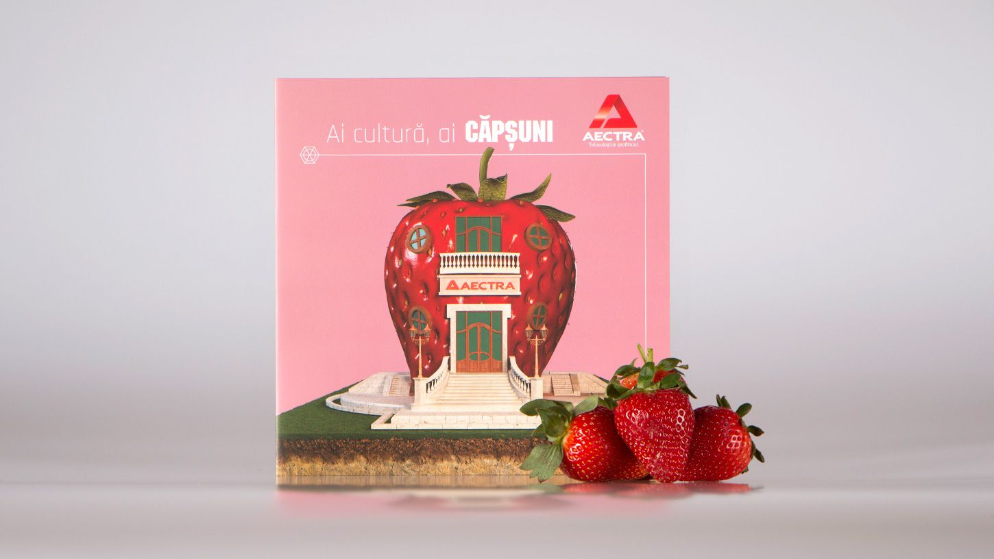 tri-fold-flyer-3d-modeling-mockup-strawberries-agriculutre-rebranding-graphic-design-01-3DArtStudio