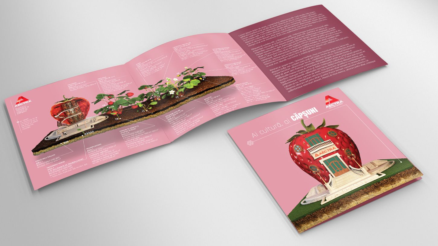 tri-fold-flyer-3d-modeling-mockup-strawberry-agriculture-rebranding-graphic-design-3DArtStudio