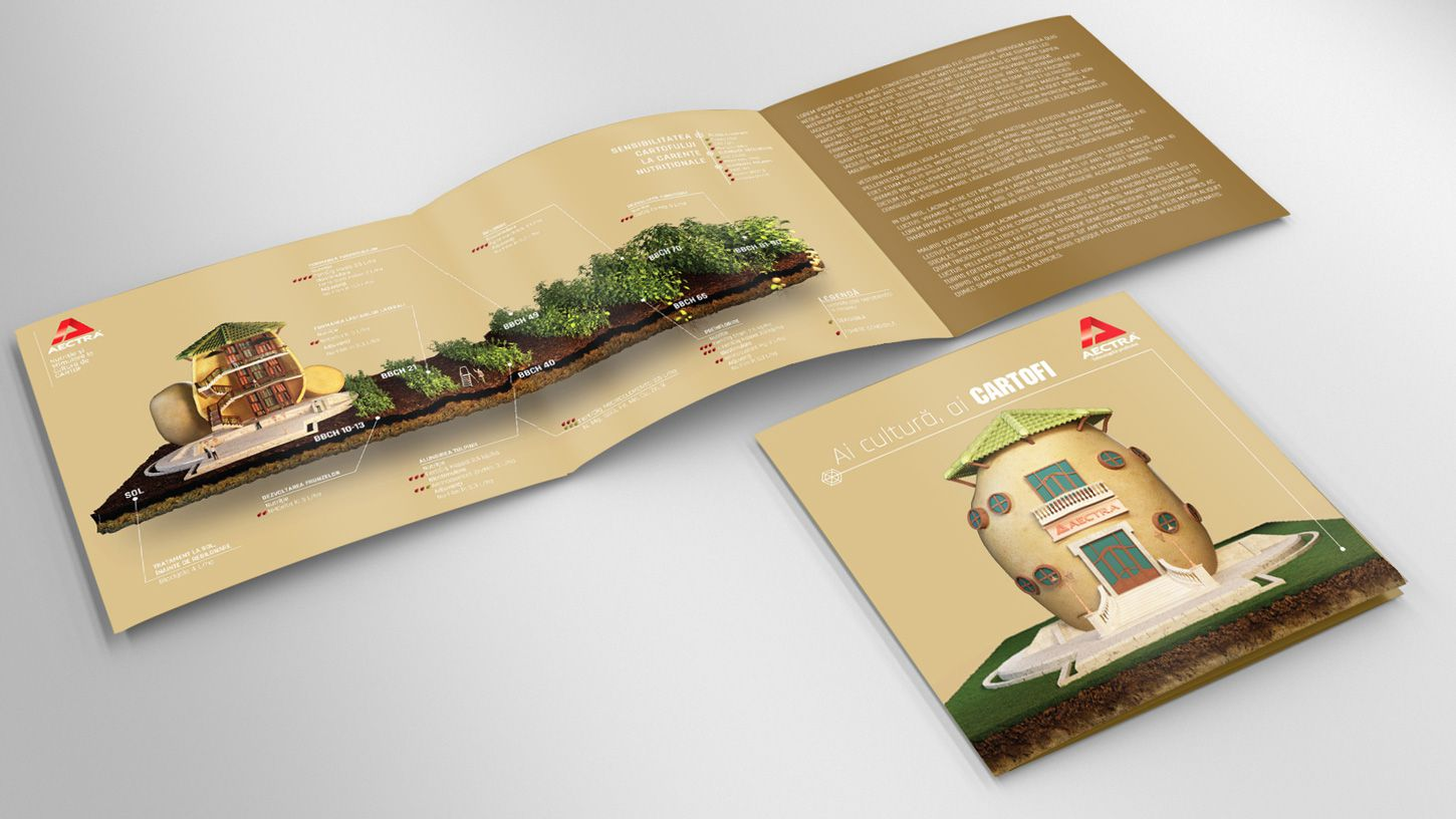 tri-fold-flyer-3d-modeling-potato-agriculture-rebranding-graphic-design-3DArtStudio